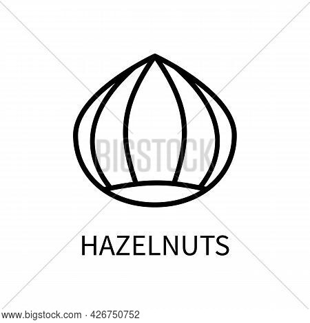 Icon Of The Hazelnut Line In A Simple Style. A Source Of Milk Of Vegetable Origin. Vector Sign In A