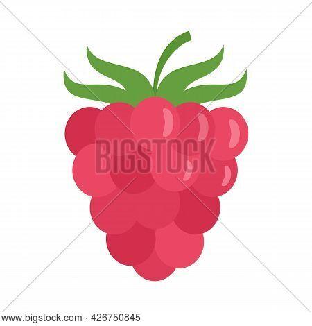 Raspberry Icon. Flat Illustration Of Raspberry Vector Icon Isolated On White Background