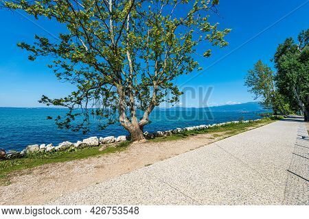 Bicycle And Pedestrian Lane On The Coast Of Lake Garda That Connects The Towns Of Lazise, Cisano, Ba