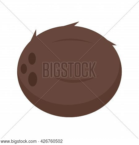 Whole Coconut Icon. Flat Illustration Of Whole Coconut Vector Icon Isolated On White Background