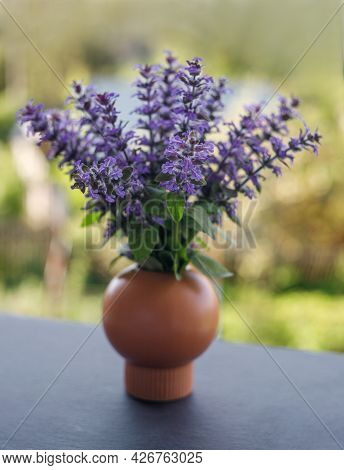 Bouquet Of Purple Flowers. Ajuga Reptans Or Bugle Or Bugleweed. Spring Flowers. Sentimental Picture.