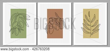Olive Branch With Fresh Leaves And Olives. Botanical Set For Wall Decoration. Linear Leaves Are Draw