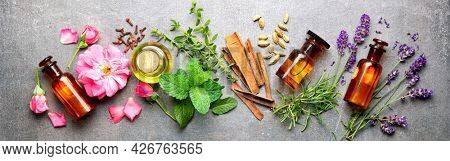 Bottles of essential oil with rosemary, thyme, cinnamon sticks, cardamom, mint, lavender, rose petals and buds on a stone background