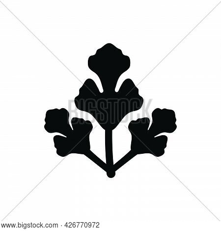 Parsley Icon. Meticulously Designed Vector Eps File.