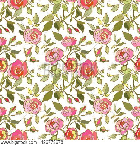 Cute Floral Pattern Of Pink Roses Flowers. Seamless Print With Garden Flowers On White Background. V