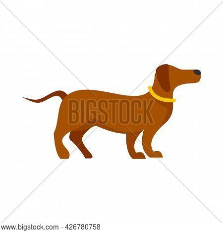 Sport Dog Training Icon. Flat Illustration Of Sport Dog Training Vector Icon Isolated On White Backg