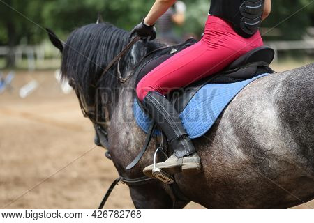 Unknown Competitor Riding On Show Jumper Horse On Equitation Event Summer Time. Show Jumping Horse U