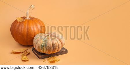 Autumn, Festive Decor Of Pumpkins And Foliage On An Orange Background. The Concept Of Thanksgiving,