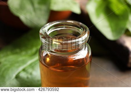 Bottle Of Broadleaf Plantain Extract, Closeup View