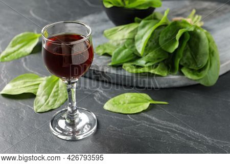 Broadleaf Plantain Tincture On Grey Table, Space For Text