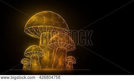 Polygonal Vector Illustration Of Mushrooms On A Black Background. Mushroom Glade Low Poly Design. Mu