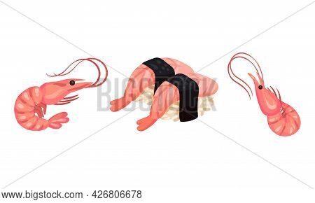 Appetizing Snack With Cooked Shrimp Or Prawn Vector Set
