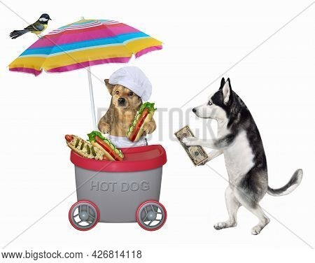 A Dog Husky Buys A Hot Dog In A Grey Mini Movable Kiosk. White Background. Isolated.