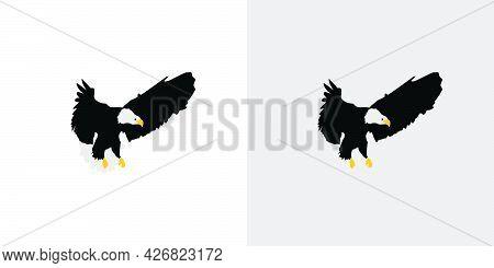 Elegant And Fantastic Eagle Illustration Vector Design