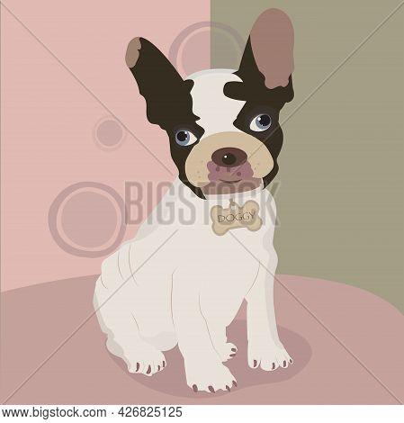 Cute Bulldog Puppy With Bone Collar On Pink Background