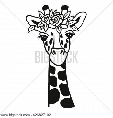 Cute Lady Giraffe. Monochrome Illustration Head With Flowers. Vector Image The Giraffe On White Back