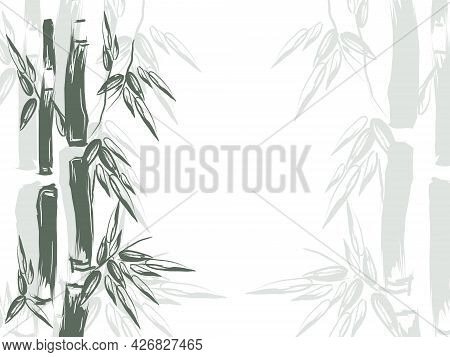 Hand Drawn Vector Illustration With Bamboo.  Bamboo Forests Of Asia.