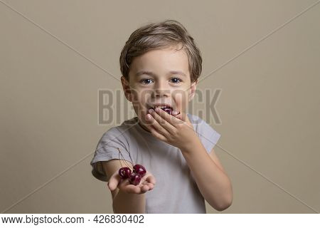 Handsome And Happy Boy Eating Ripe, Sweet, Juicy, Fresh Cherries. Little Child Holding Cherries. Con