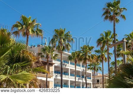 Contemporary Architecture Surrounded By Palm Trees On The Island Of Mallorca. Integration Of Archite