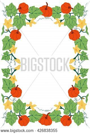 Rectangular Frame With Pumpkins, Flowers And Leaves. Botanical Background With Pumpkin Plant. Templa