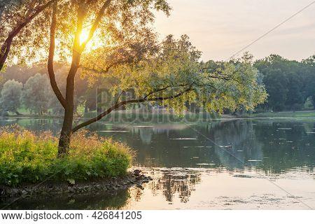 Catherine Park At Sunset, Tsarskoe Selo (pushkin), Saint Petersburg, Russia