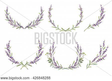Set Of Lavender Colorful Wreaths. Vector Illustration