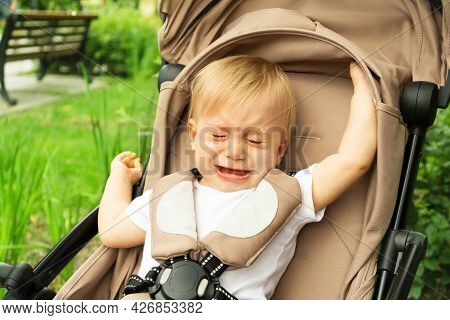 Little Caucasian Sad Baby Girl, Crying Sitting At Carriage On Background Of Green Grass In Summer Pa