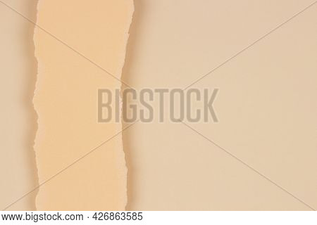 Vertical Piece Of Torn Paper On Blank Beige Background. Abstact Monochrome Earthy Color Background