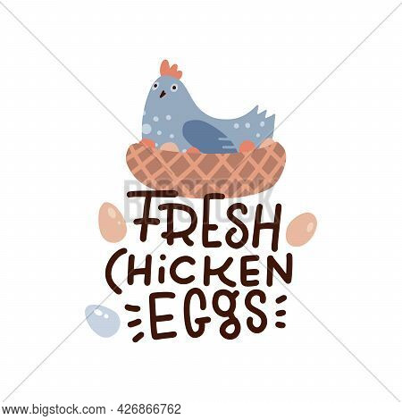Cute Hen Laying Eggs In Its Nest Isolated On White Background. Fresh Chicken Eggs - Lettering Text.