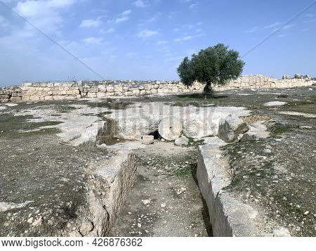 Burial Cave In The Ancient Jewish Settlement Of Susiya In The Hebron Highlands