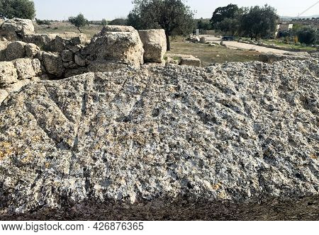 Images Of The Menorah In The Ancient Jewish Settlement Of Susiya In The Hebron Highlands