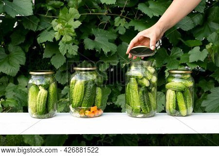 A Woman Closes A Lid On Cucumbers In A Jar For Preserving Vegetables In A Marinade. Four Cans Of Cuc