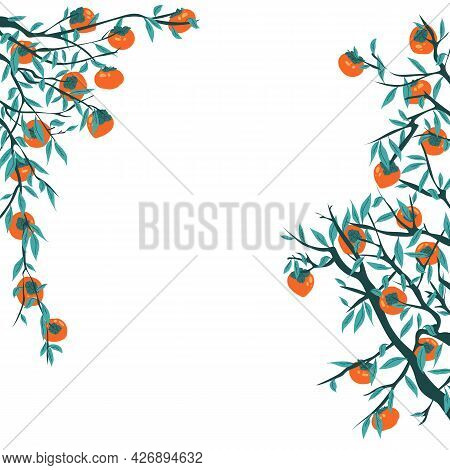 Persimmon Tree Branches With Fruits And Leaves. Frame For Chuseok With Foliage And Autumn Harvest. K