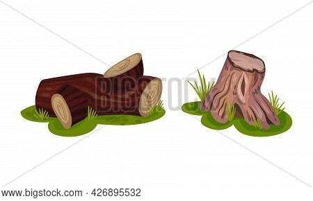 Tree Stump And Snag With Dry Branches As Coarse Woody Debris Vector Set