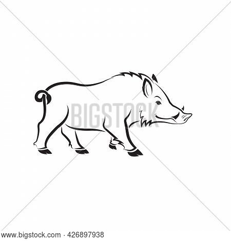 Vector Of Boar Design On White Background. Wild Animals. Easy Editable Layered Vector Illustration.