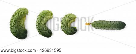 Curved Cucumbers In Flat Lay Isolated On White.