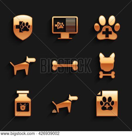 Set Dog Bone, Pooping, Medical Certificate For Dog Or Cat, And, Medicine Bottle And Icon. Vector