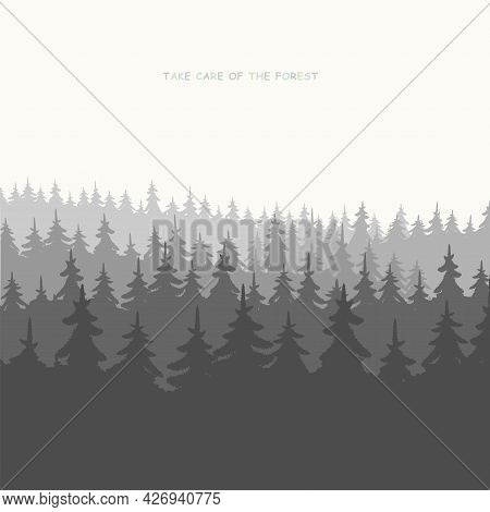 Background Of A Wild Coniferous Forest. Pine, Spruce Landscape Nature, Panorama Of The Forest