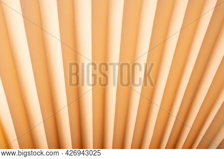 Abstract Embossed Paper Background, Origami Beige Texture.