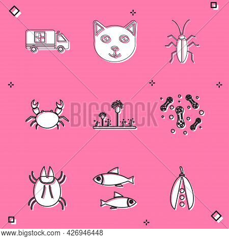 Set Emergency Car, Pet, Cockroach, Crab, Mold, Bacteria, Parasite Mite And Fish Icon. Vector
