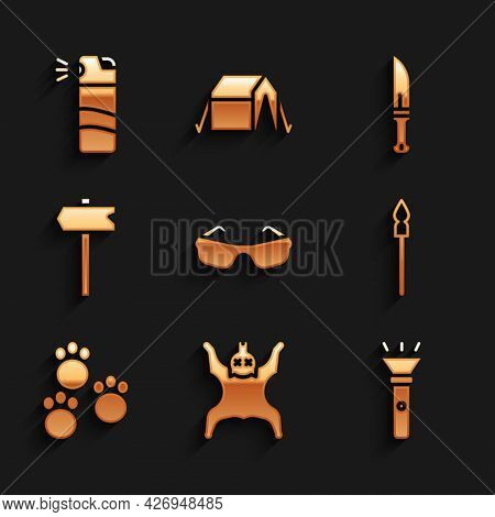 Set Glasses, Bear Skin, Flashlight, Medieval Spear, Paw Print, Road Traffic Sign, Hunter Knife And P