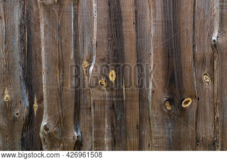 Wood Texture With Knots. Brown Wood And Yellow Twigs. Cut Wood Pattern.