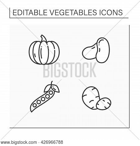 Vegetables Line Icons Set. Edible Plant. Vegetarian, Healthy Nutrition. Pumpkin And Beans, Peas And
