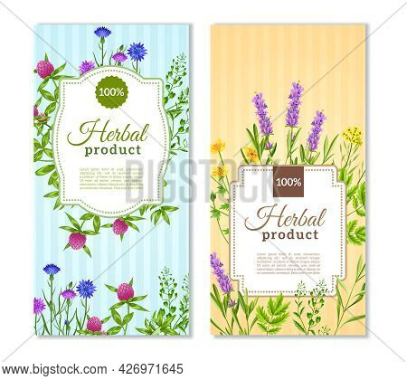 Herbal Products Vertical Flat Banners In Tender Pastel Colors With Herbs And Wild Flowers Isolated V