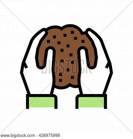 Hands Holding Soil In Hands Color Icon Vector. Hands Holding Soil In Hands Sign. Isolated Symbol Ill