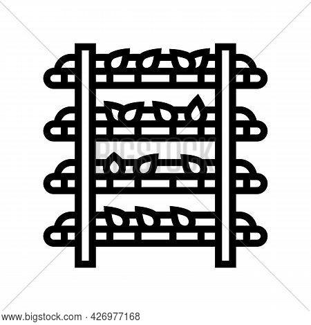 Oxidation Tea Line Icon Vector. Oxidation Tea Sign. Isolated Contour Symbol Black Illustration