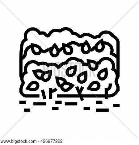 Cultivation Tea Leaves Line Icon Vector. Cultivation Tea Leaves Sign. Isolated Contour Symbol Black