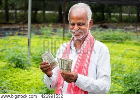 Happy Smiling Indian Farmer Counting Currency Notes Inside The Greenhouse Or Polyhouse - Concept Of