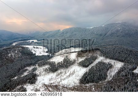 Aerial View Of Barren Winter Landscape With Mountain Hills Covered With Evergreen Pine Forest After