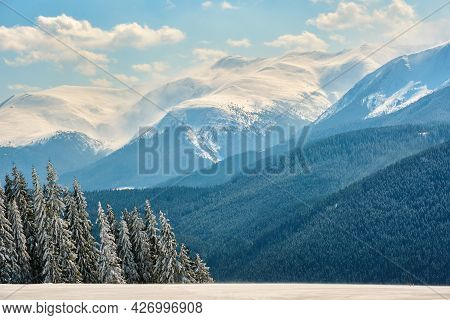 Winter Landscape With High Mountain Hills Covered With Evergreen Pine Forest After Heavy Snowfall On